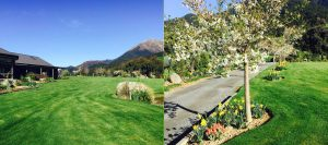 nz-summer-farm-stay